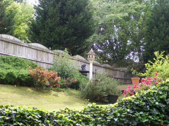 Garden - South Side