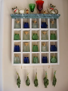 Mint drying on my spice rack