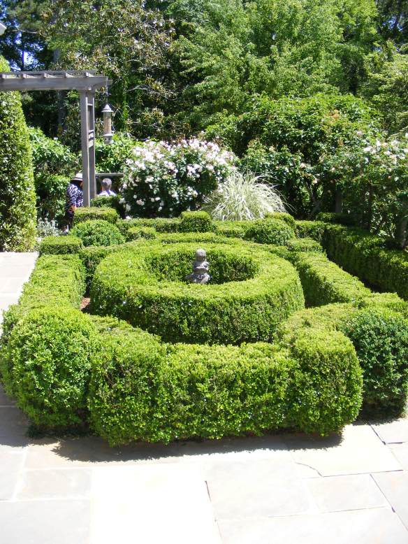 A boxwood hedge