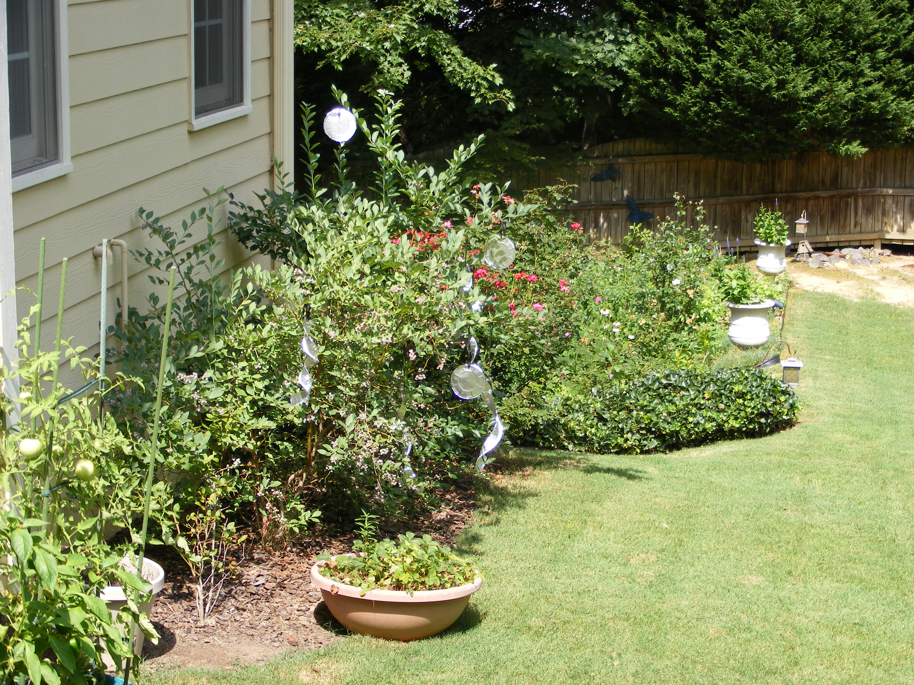 Redhead Garden Outstanding Tips And Advice On Gardening